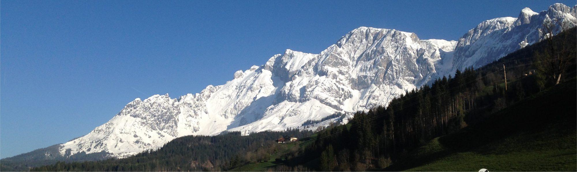 Alpendomizil